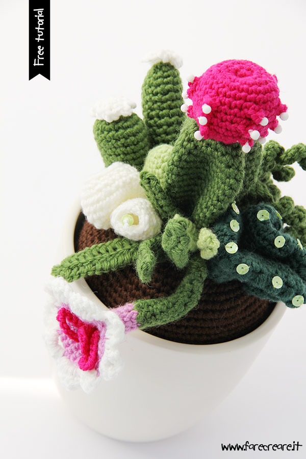 Cactus uncinetto composizione piante grasse