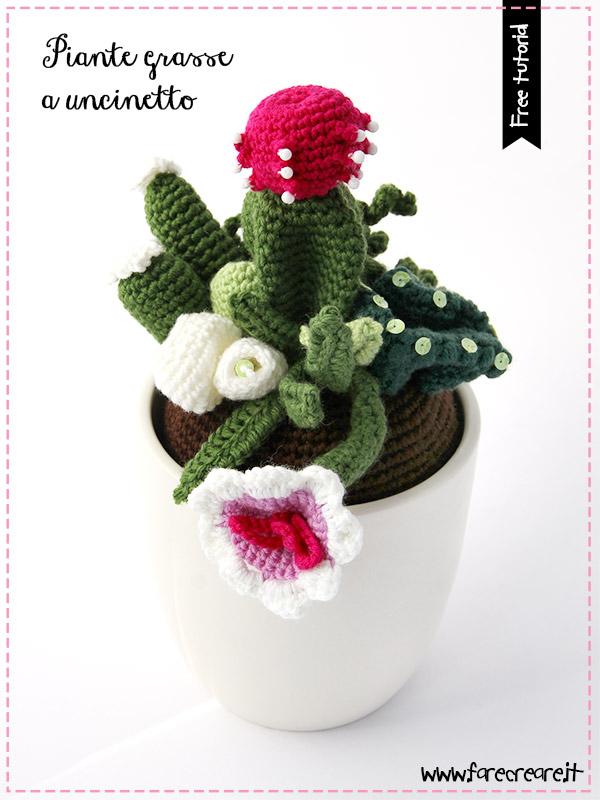 Uncinetto piante grasse in vaso bianco