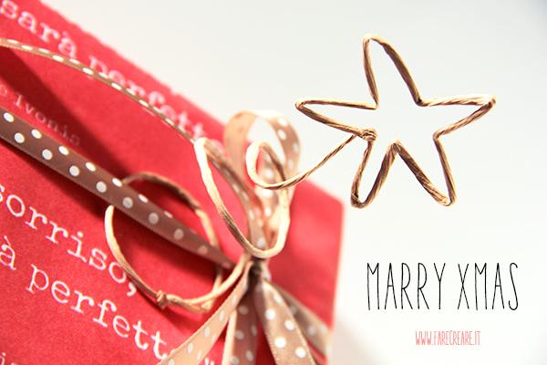 Merry xmas stella in filo metallico.