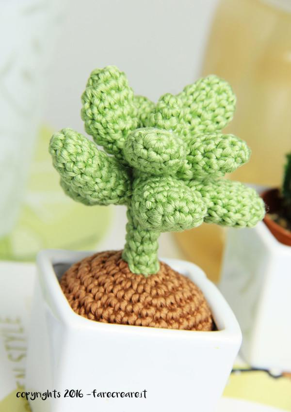 Dettaglio della mia nuova pianta grassa a crochet.