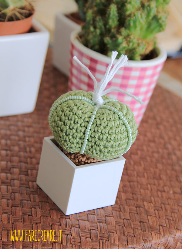 Cactus uncinetto Schema.
