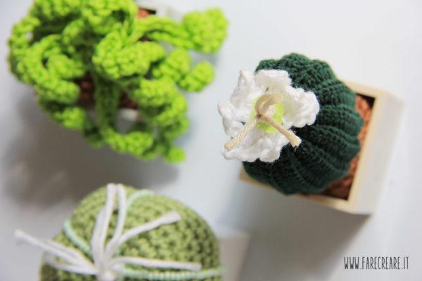 Schema pianta grassa crochet gratis - 4