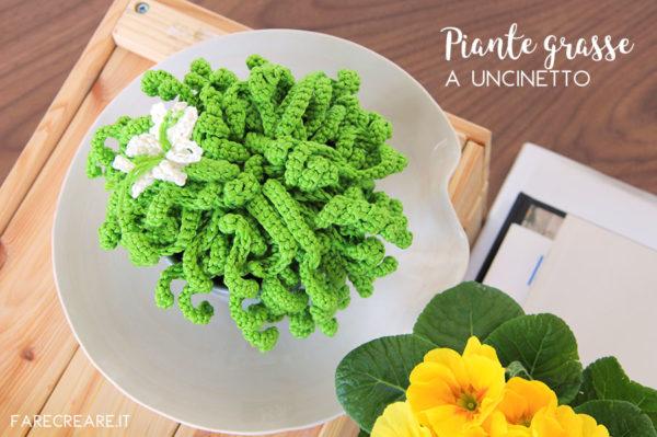 Uncinetto schemi piante grasse facili: pianta riccia con fiore - pattern free da scaricare.